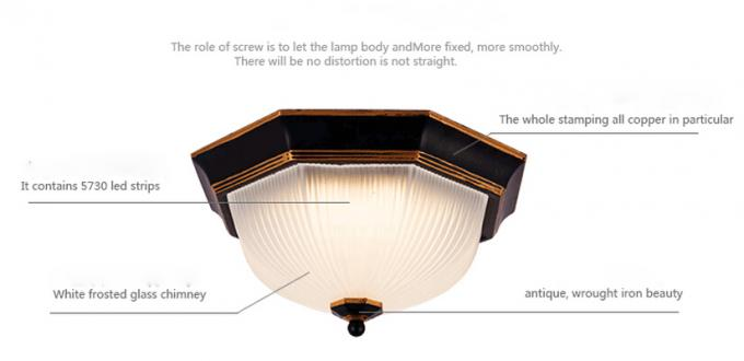 Modern 12W Surface led ceiling light  for hotel , office, bedroom