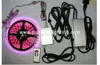 China Indoor / outdoor bright remote RGB LED Strips Light 12v 24v flexiable PCB Material supplier
