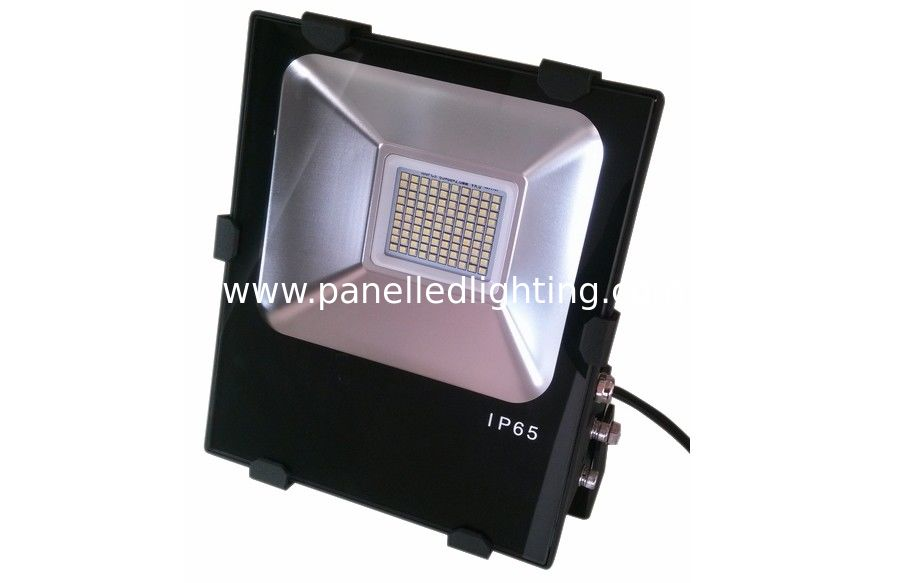 highest lumen led flood light bulbs
