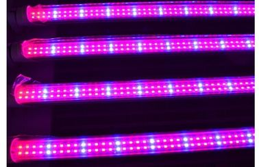 China Full spectrum 18w T8 led grow light for plant growth , flower and vegetable distributor